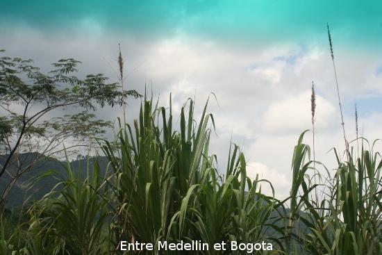 0856_de_bogota__medellin.jpg